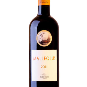 Bot-Malleolus-2011_0(1)