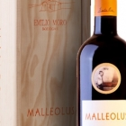 bot-malleolus-20011-est